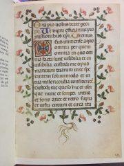 Italian Scroll Blank